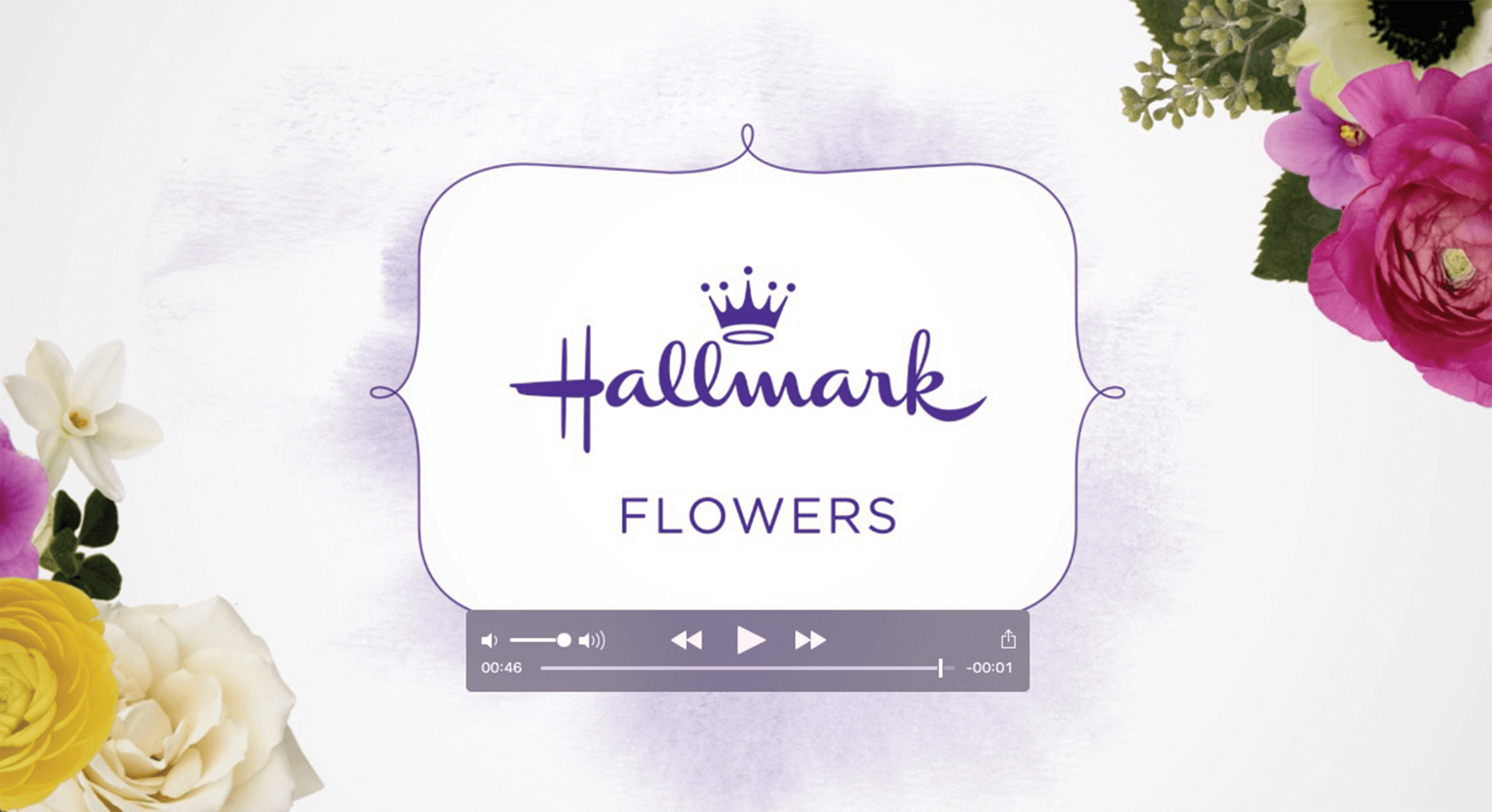 Video of Hallmark Flowers